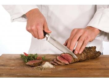 סכין פריסה 20 ס